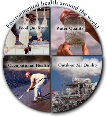 Environmental health around the world - food quality, water quality, occupational health, outdoor health